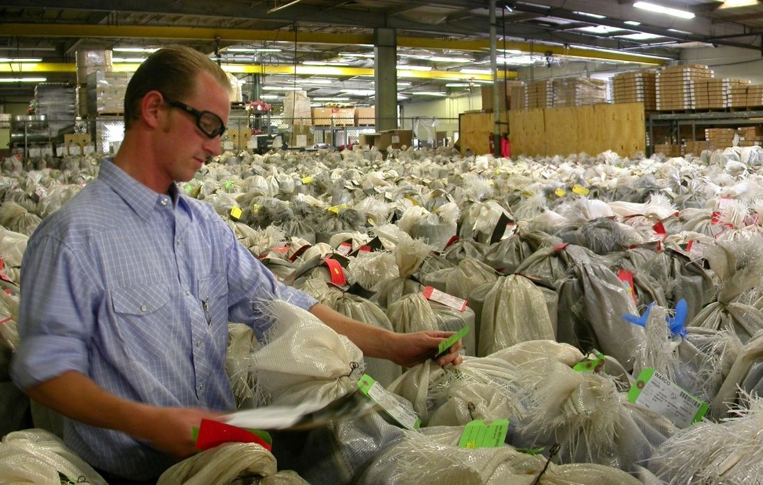 Employee Checking Inventory and Implementing Quality Control